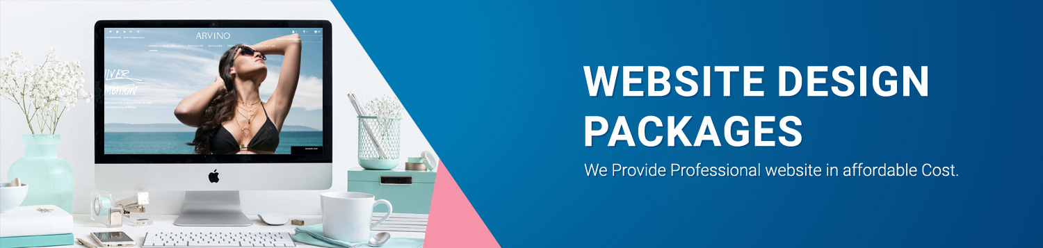 website design packages in jaipur-A R Infotech
